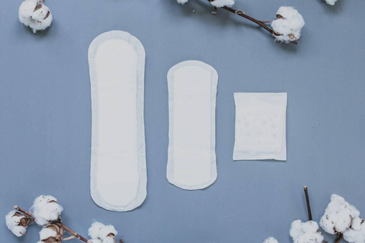 20 stk inkontinensbind Dry & Light / Natracare