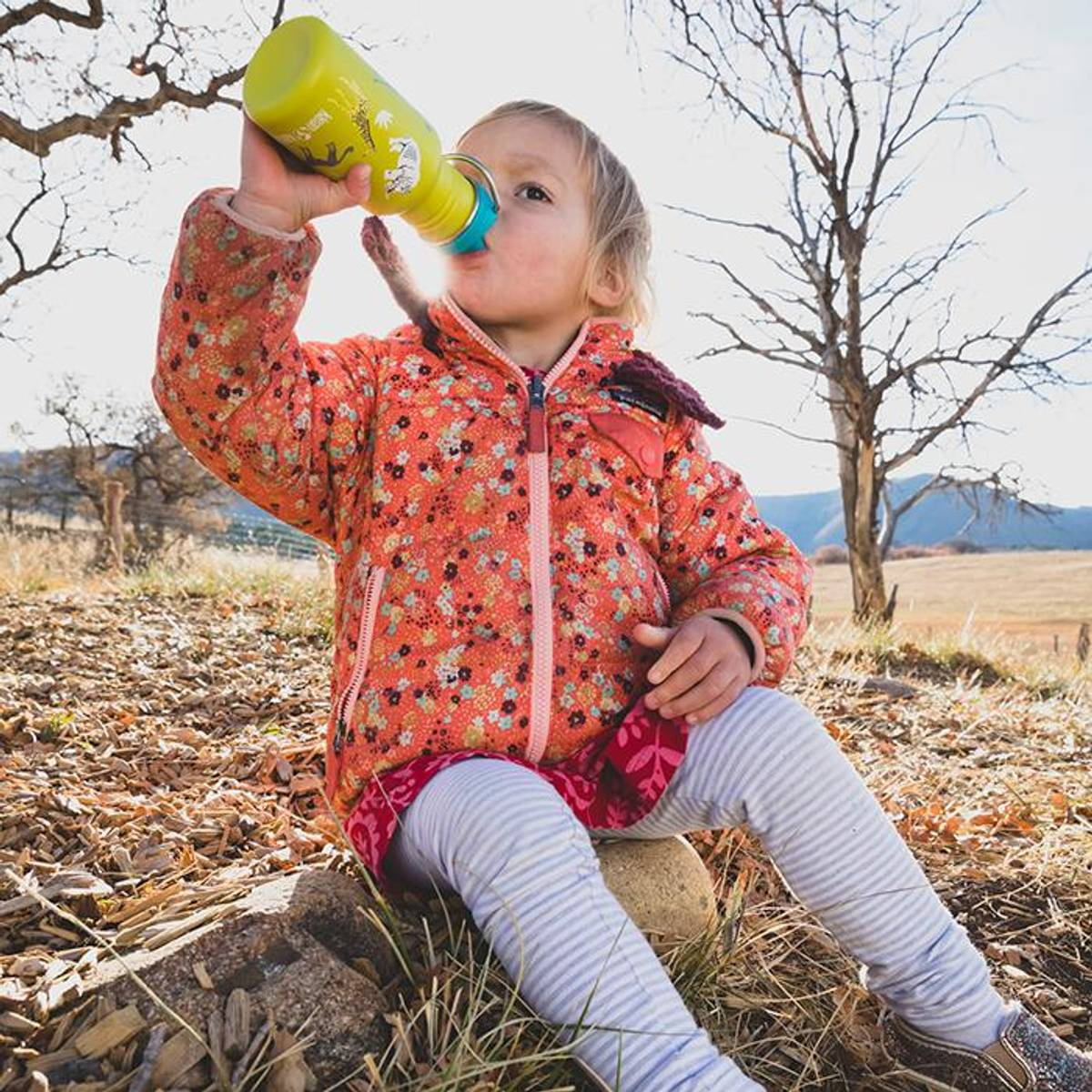 Drikkeflaske SIPPY 355 ml Safari / Klean Kanteen