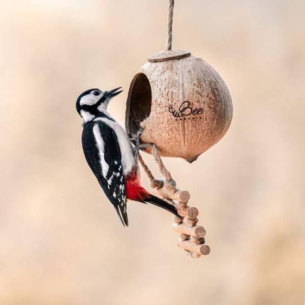 Bilde av Fuglemater i kokosnøtt med stige / Beeorganic